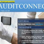Audit connect 2